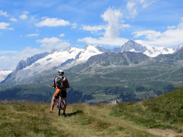 Panorama sull'Aletscharena dalla sommità sovrastante Äbnimatt - altopiano dell'Aletsch (Riederalp, Bettmeralp, Fischeralp),  Aletschhorn (4.193) ed i ghiacciai sovrastanti (Driestgletscher e Zenbaechengletscher)