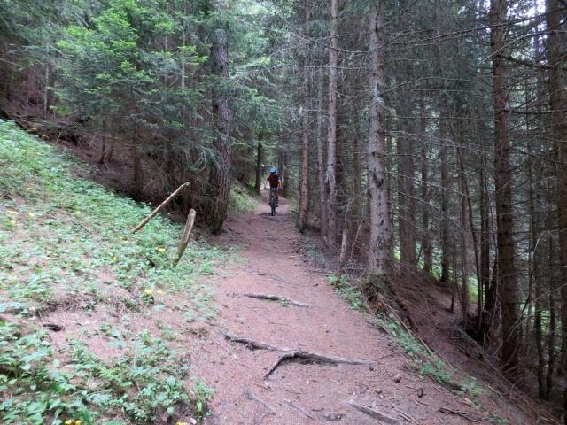 Discesa su sentiero dall'alpe Äbnimatt