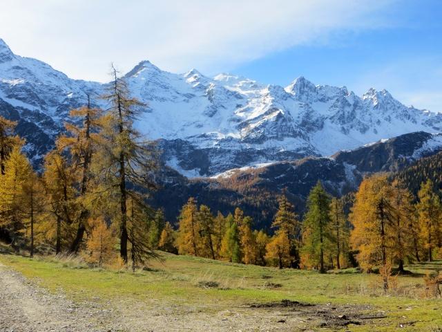 Alpe Piotta - sullo sfondo il Pizzo Campo Tencia ed il Pizzo Campolungo
