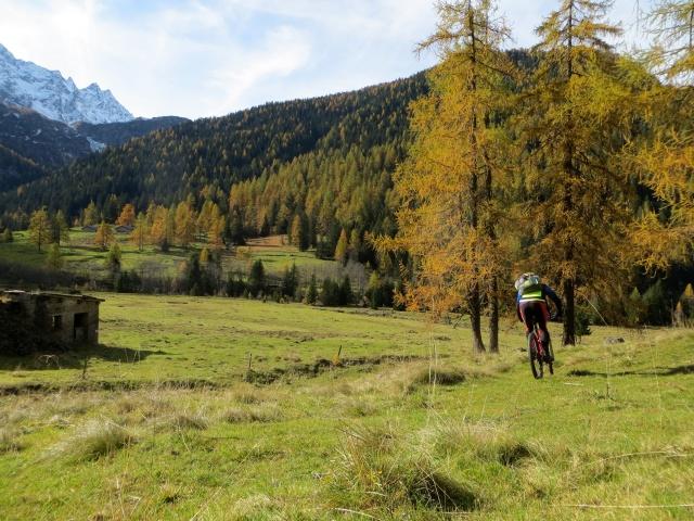 Arrivo ai Prati di Gera al termine della discesa dall'Alpe Piota