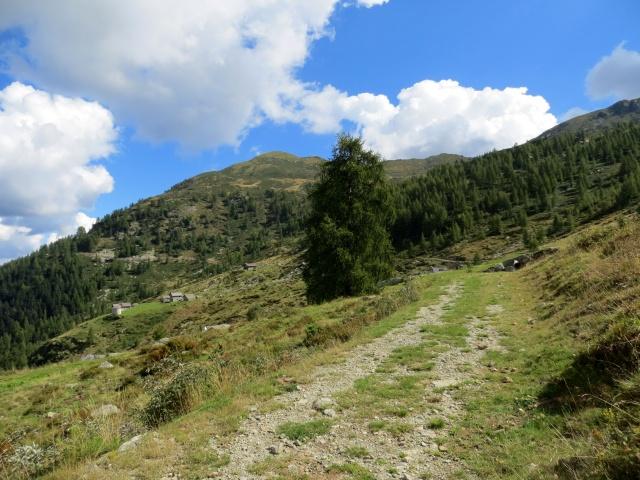 In direzione dell'Alpe Sorbella