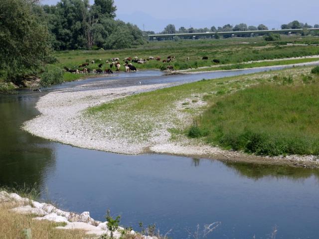Anello Parco del Serio - ansa del fiume Serio