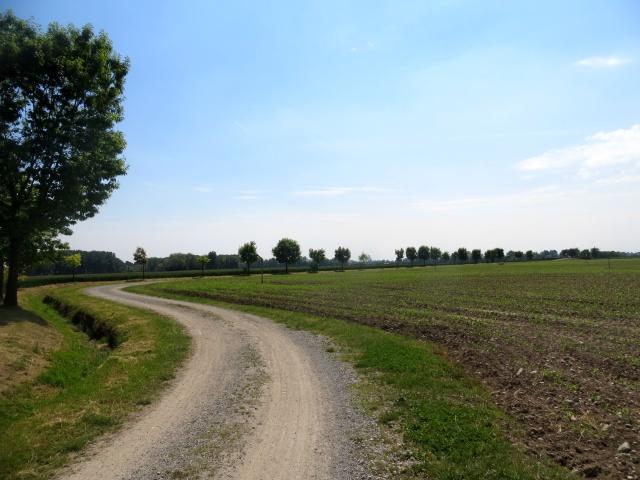 Anello Parco del Serio - sterrato lungo i campi coltivati
