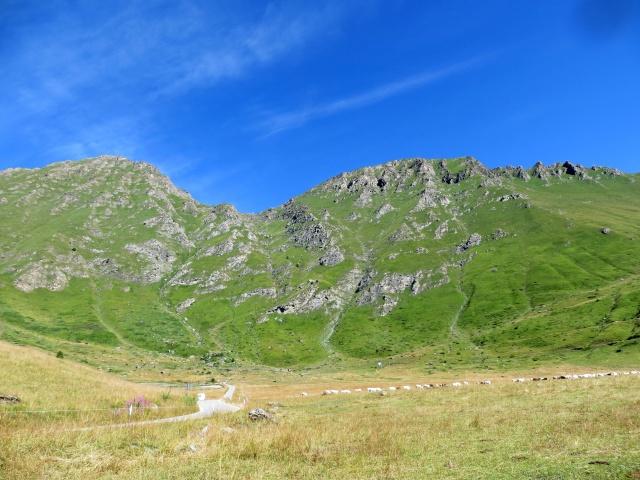 Pian dell'Alpe - sullo sfondo Monte Pintas e Punta Fattiere