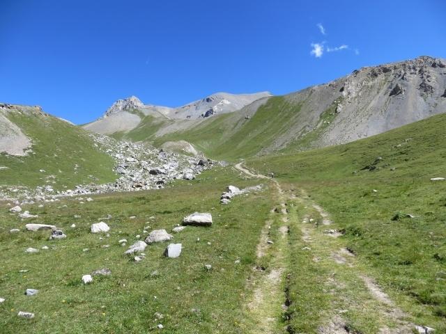 La traccia di sentiero prativo per il Colle della Rho