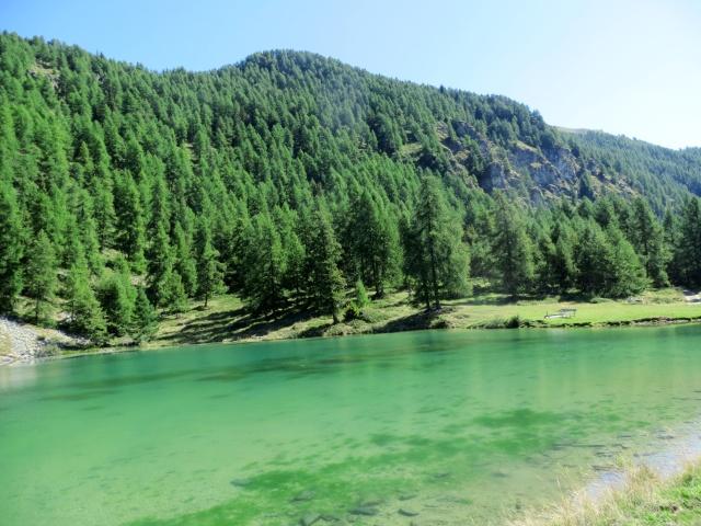 Laghetto presso l'Alpe Croux