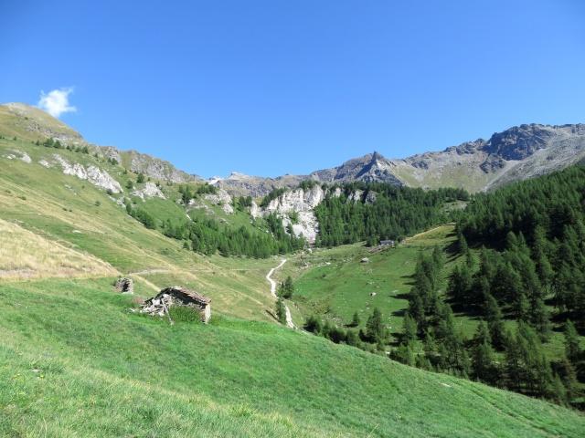 Panorama dall'Alpe Novalles - sullo sfondo l'Alpe Foresus