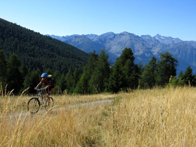 Nei pressi dell'Alpe Chanchellier Superiore
