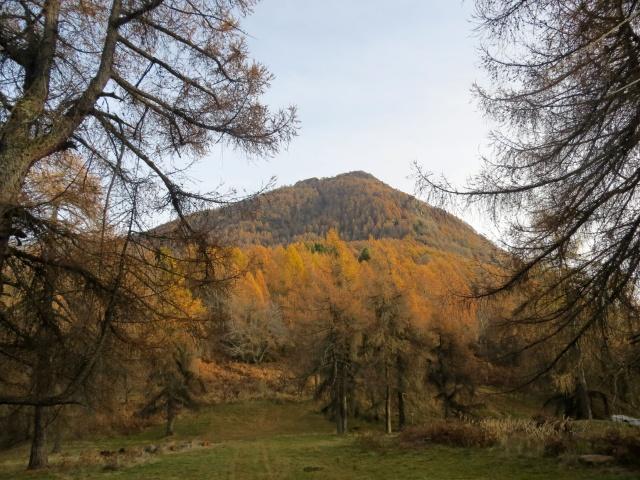 Il Monte Legnoncino dalla località Roccolo di Artesso