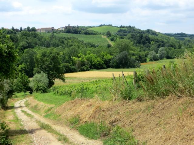 Tratto di percorso nei campi