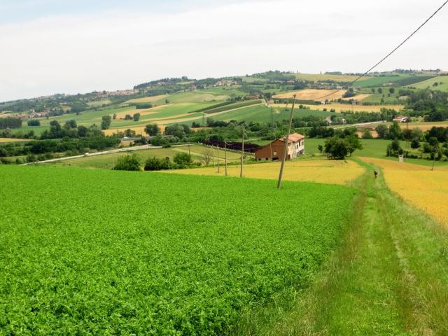 Percorso tra campi coltivati e casali