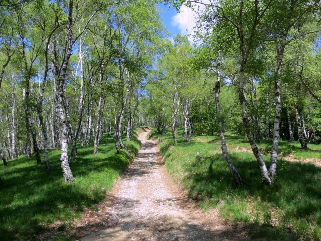 """Percorrendo la """"Passeggiata degli Alpeggi"""""""