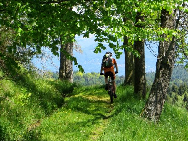 """Tratto di sentiero al termine della """"Passeggiata degli Alpeggi"""""""