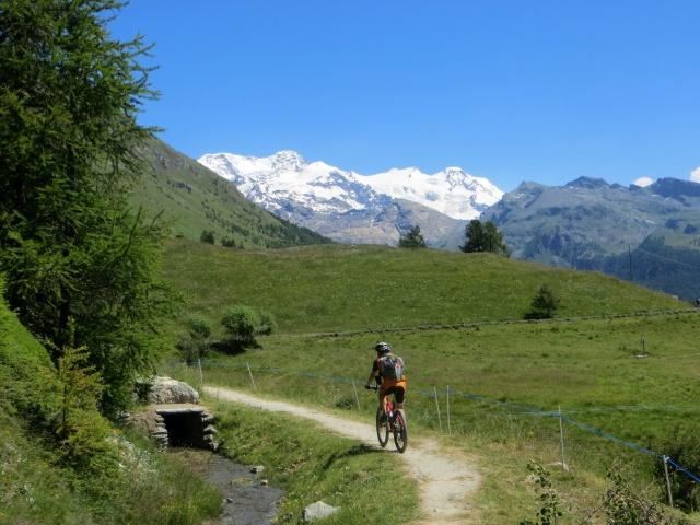 Sentiero che corre parallelo al Ru Courtod, sullo sfondo le vette del Monte Rosa
