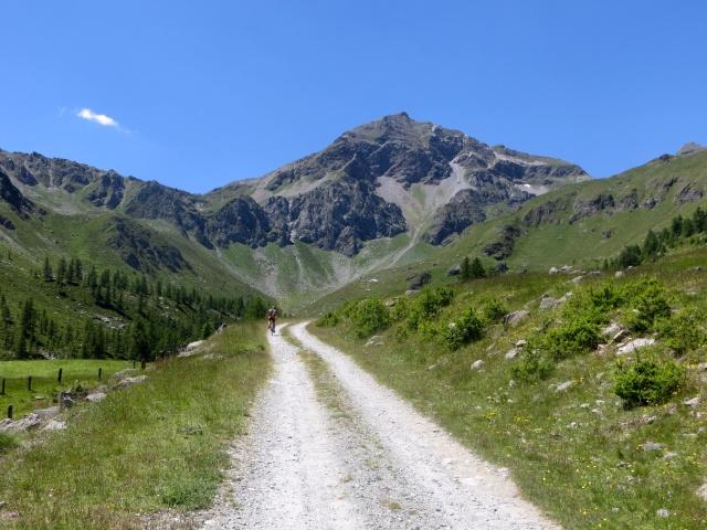 Salita sterrata per il Rifugio Grand Tournalin presso l'Alpe di Nana Inferiore