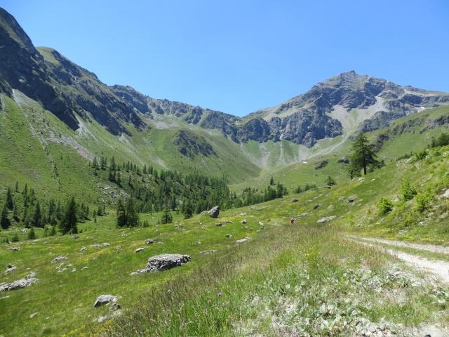 Salita al Rifugio Grand Tournalin - Alpe Tournalin