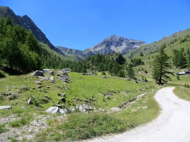 Inizio della salita sterrata per il Rifugio Grand Tournalin presso l'Alpe di Nana inferiore