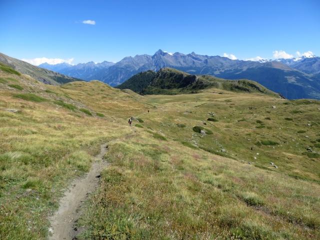 Il sentiero che attraversa i pascoli dell'Alpe Tsa de la Comba