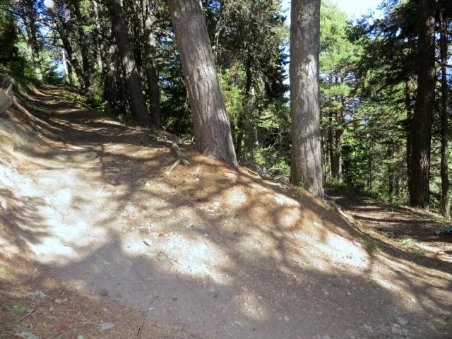 Ottimo trail di discesa verso Fossaz-Saint Nicolas