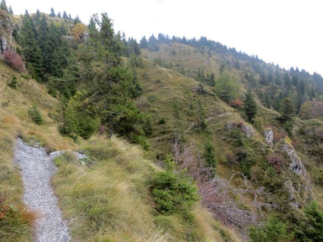L'impegnativo sentiero che scende a Campo d'Avene