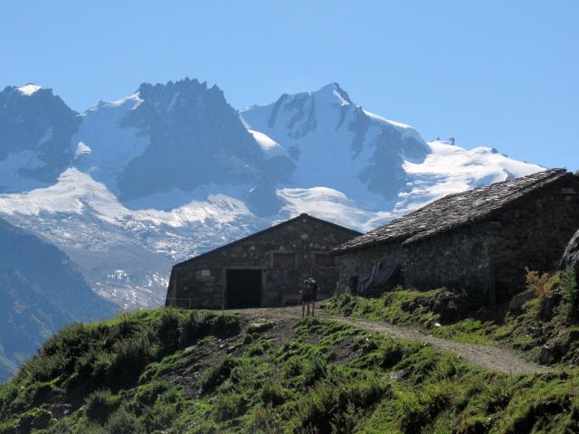 Il Gran Paradiso (4.061) e la Becca di Montandayné (3.838) dall'Alpe Djouan