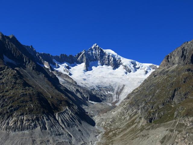 L'Aletschhorn (4.195 m) con il Mittelaletschgletscher