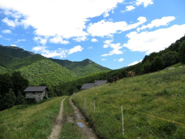 Alpe di Esino