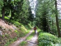 Salita in forestale al Grimselpass
