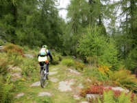 Sentiero per l'Alpe Agarù