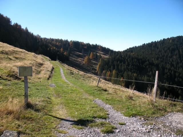 Inizio sterrato da Alpe della Costa