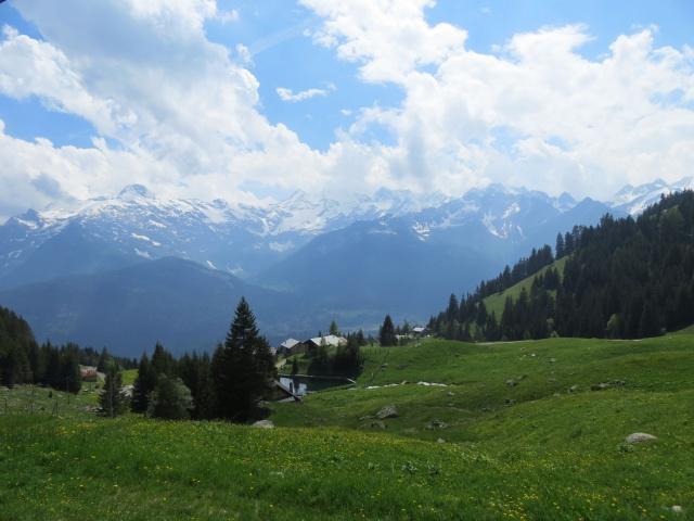 Panoramica su Predelp, sullo sfondo i rilievi della Leventina (gruppo del Pizzo Campo Tencia)
