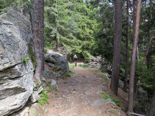 Tratto iniziale della forestale che scende in direzione di Osco