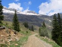 Tratto finale di salita prima dell'Alpe di Carì