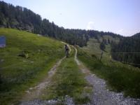 Alpe della Costa