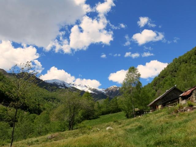 Alpe Piana dei Lavaggi