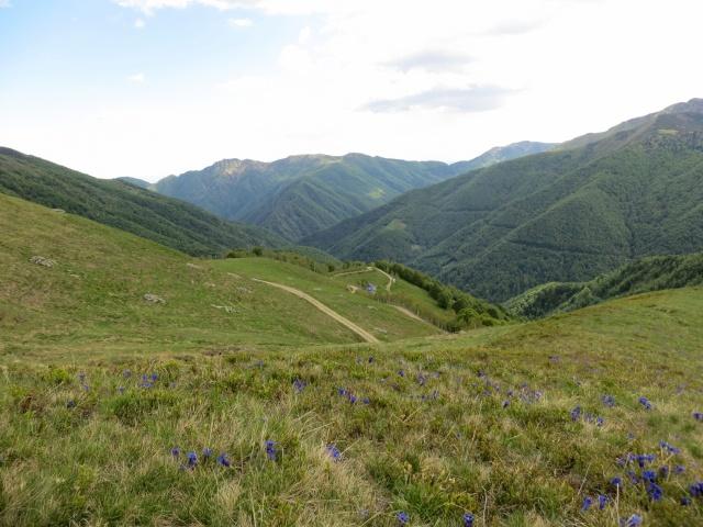 Discesa verso l'Alpe Camparient