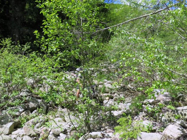 Difficoltoso attraversamento del torrente Caramala