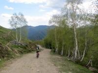 Discesa dall'Alpe Camparient verso la Piana dei Lavaggi