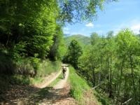 In direzione dell'Alpe Giulia