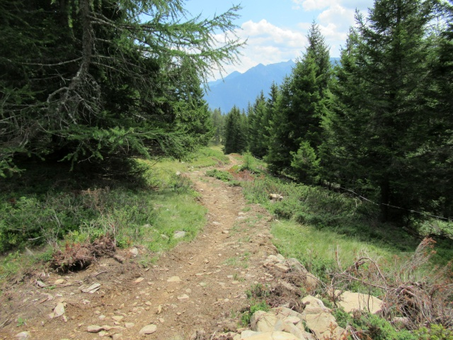 Il sentiero che scende dalla Alpe Foppascia