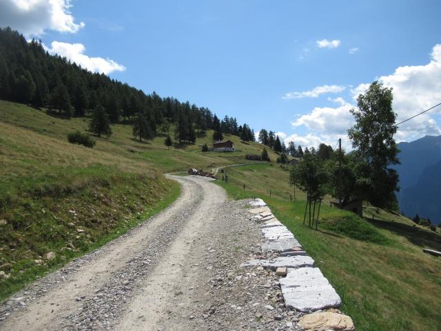La salita su sterrato che da Monte Angone porta alla Alpe dei Piai