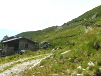Alpe di mezzo - salita all'Alpe gigiai