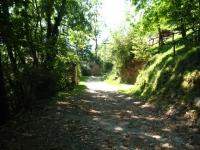 Tratto sterrato per l'Alpe Giumello da Indovero