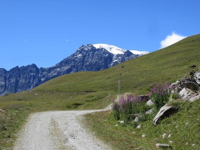 In direzione dell'Alpe Thoules - vista sul ghiacciaio del Mont Gelé
