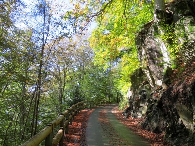 Salita ai Monti di Motti - colori autunnali