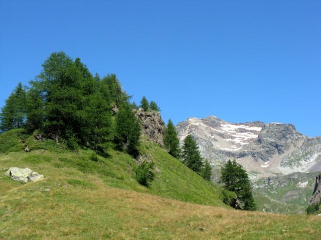 Salita all'Alpe Forno - panorama