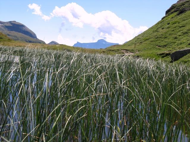 Lago alpino in direzione dell'Alpe della Satta
