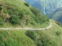 alta-valle-morobbia0061