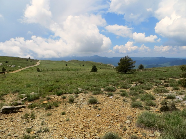 Alta Via dei Monti Liguri verso il Colle Gandolfi