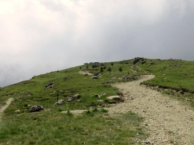 Il tratto di salita che porta dal Colle Gandolfi al Monte Pennello (non in traccia gps)